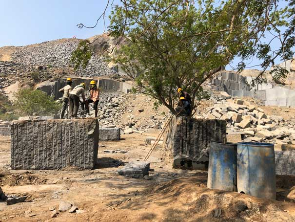 Arte groeve medewerkers India